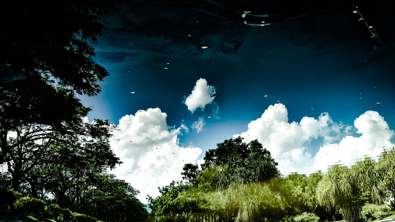 Tree Nature Water Sky No People Beauty In Nature Cloud - Sky Outdoors Day Freshness The Great Outdoors - 2017 EyeEm Awards Nature_ Collection  Naturelover Naturephotography Megazine EyeEmNewHere View Landscape_photography Landscape Landscape_Collection Live For The Story Beauty In Nature Nature