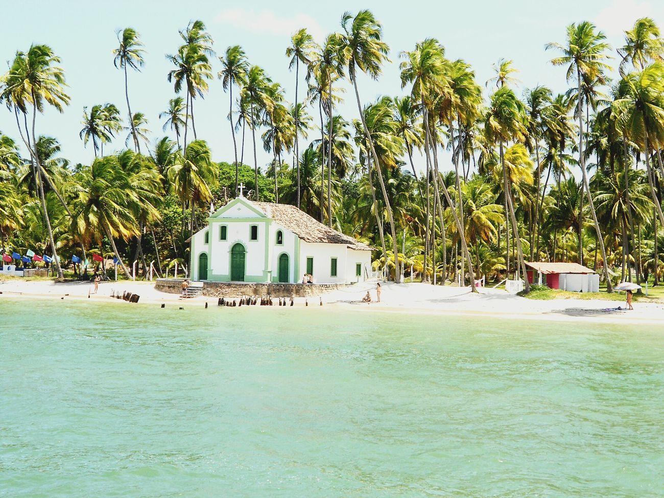 Relaxing Igreja Praia Dos Carneiros Pernambuco Natureza