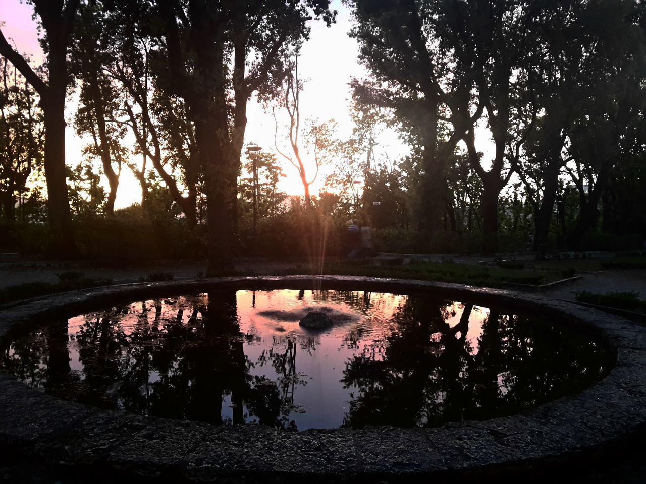 Reflection Water Tree Lake Silhouette Nature Sunset Outdoors No People Reflecting Pool Beauty In Nature Growth Sky Puddle Forest Day Scenics Flood Tree Area