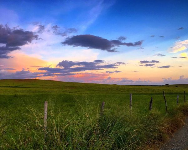 Hello World Check This Out Beauty In Nature Hay Field Beautiful Sunset Sky Puerto Rico The Secret Spaces