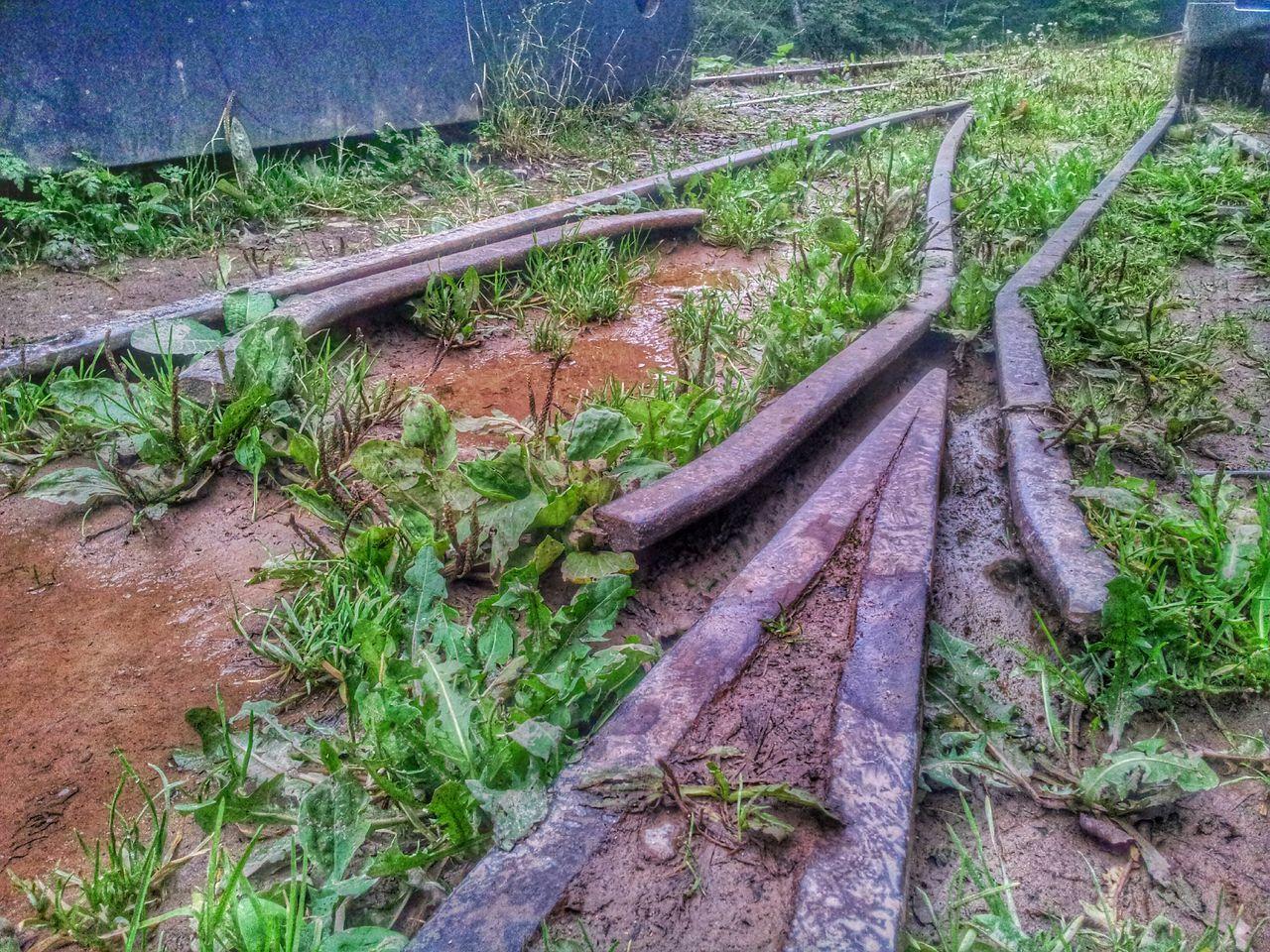 Gleisanlage vor Train Tracks Mine Train