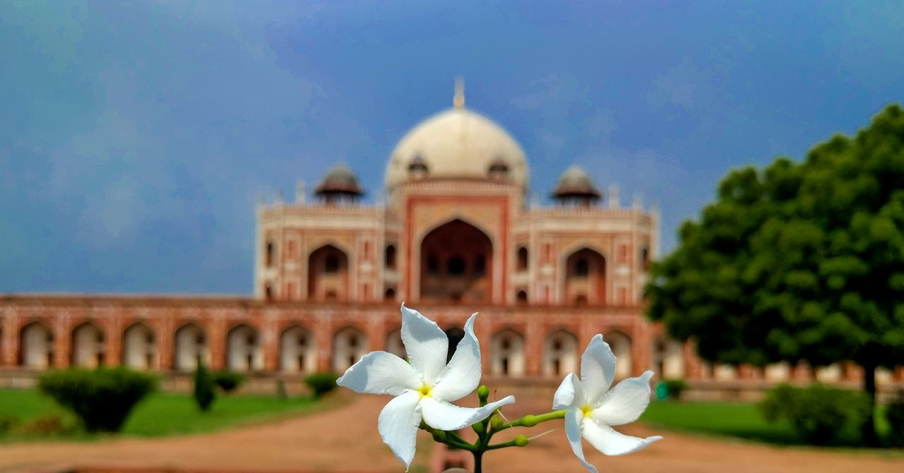 Humayun's Tomb⚰️⚰️ Architecture Dome Travel Destinations Built Structure Building Exterior No People Foreground Focus Background Blurr Bokeh Photography Ancient Architecture Ancient Civilization Architecture 3XSPUnity Nexus 6p Photography Humayun's Tomb Newdelhi PatelMohit Photography Mojo-Jojo Iloveyoujyotsna♥️ Muaaahhhh😘😘😘💋💋💋