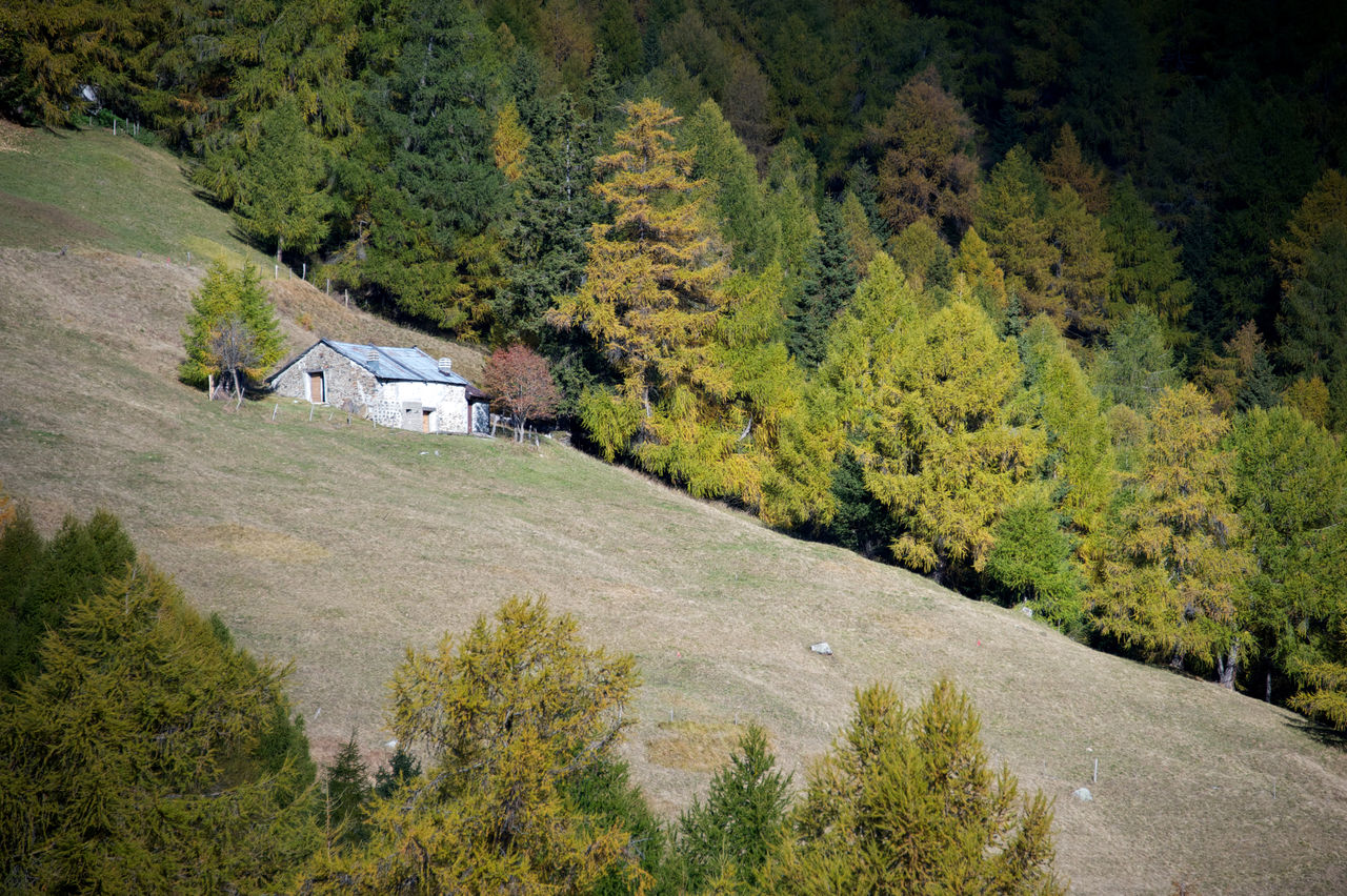 mountain landscape Autumn Chalet Forest Growth House Mountain Nature No People Outdoors Relaxing Tranquil Scene Travel Destinations Trees