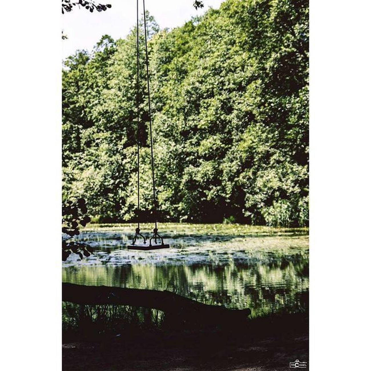 The loneliness Loneliness Swing Earthshoot CripixtMovement Landscape Michaellangerfotografie Fotografie Photography Photographyislife Water Trees Brandenburg Germany