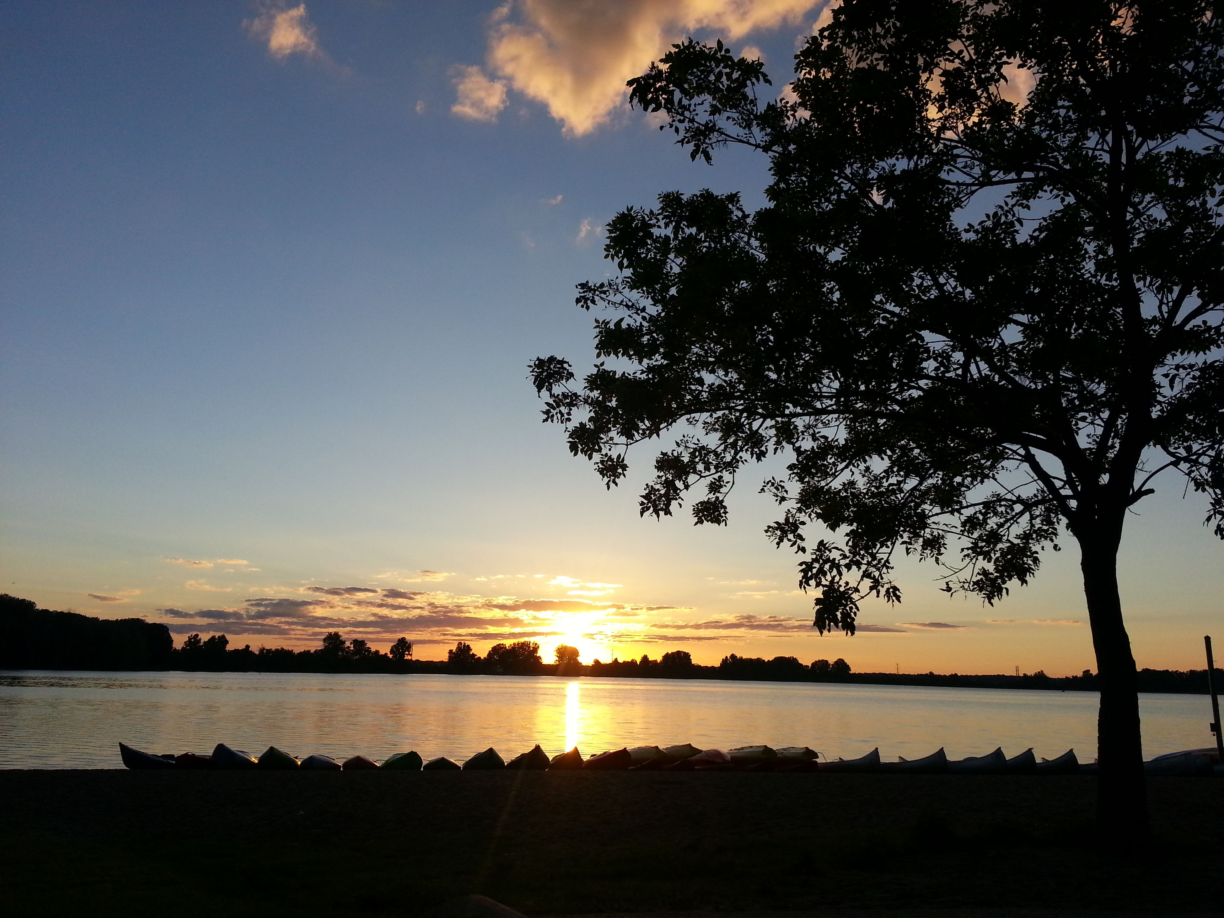 sunset, water, tranquil scene, tranquility, scenics, silhouette, tree, beauty in nature, sky, sun, nature, sea, idyllic, lake, reflection, horizon over water, sunlight, orange color, outdoors, branch