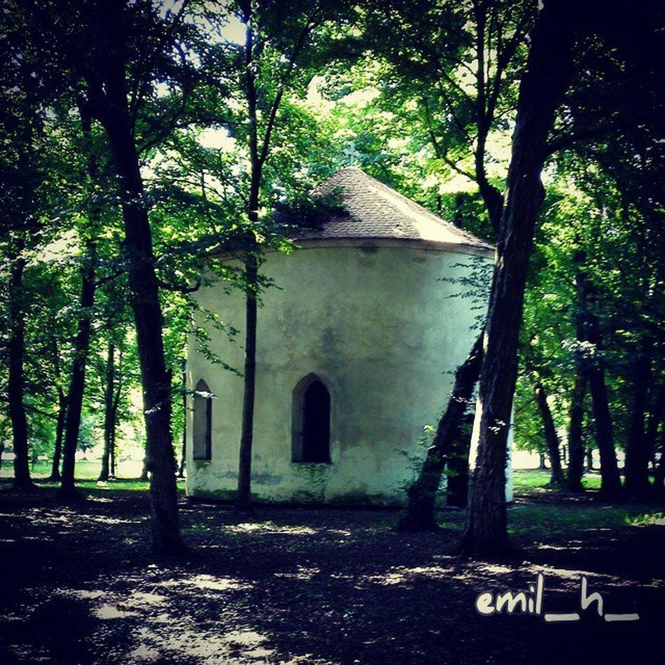 Church Chapel Murska Sobota Rakičan picoftheday prekmurje igslovenia slovenia nature spring master_shots beautiful murskasobota goexplore mura