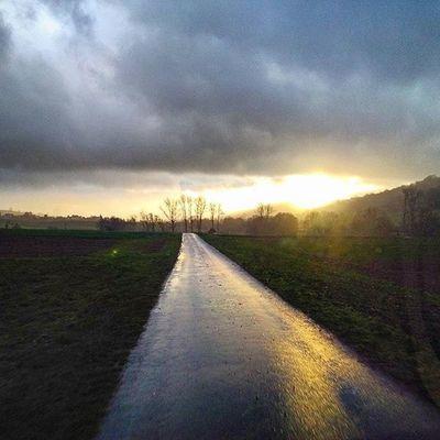 Clouds Sky Heaven Sun Sungoesdown Sunset Winter Winter2015 Tree Trees Street Straße Landschaft Landscape Landstrasse Shadow Shades