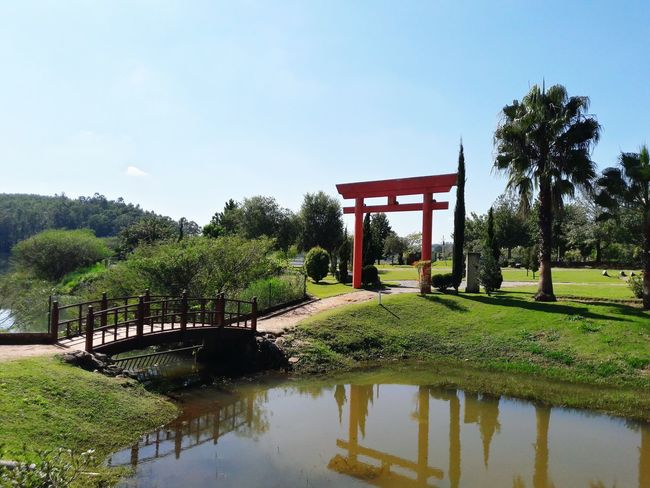 Beauty In Nature Outdoors Day Tranquility No People Japan Japan Photography Japanese Style Japan Scenery