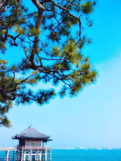 日本 Japan Shiga 滋賀 琵琶湖 浮御堂 満月寺浮御堂 観光地 Sightseeing