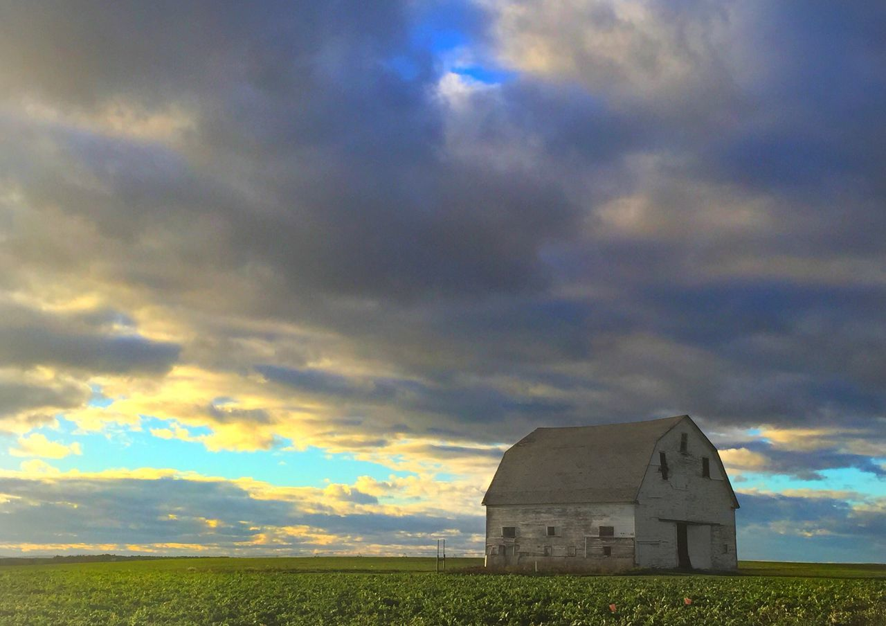 Old barn in the golden hour. Barn White Barn Sky Cloud - Sky No People Field Nature Landscape Rural Scene Outdoors Tranquil Scene Building Exterior Beauty In Nature Built Structure Scenics Agriculture Architecture Day Old Barn