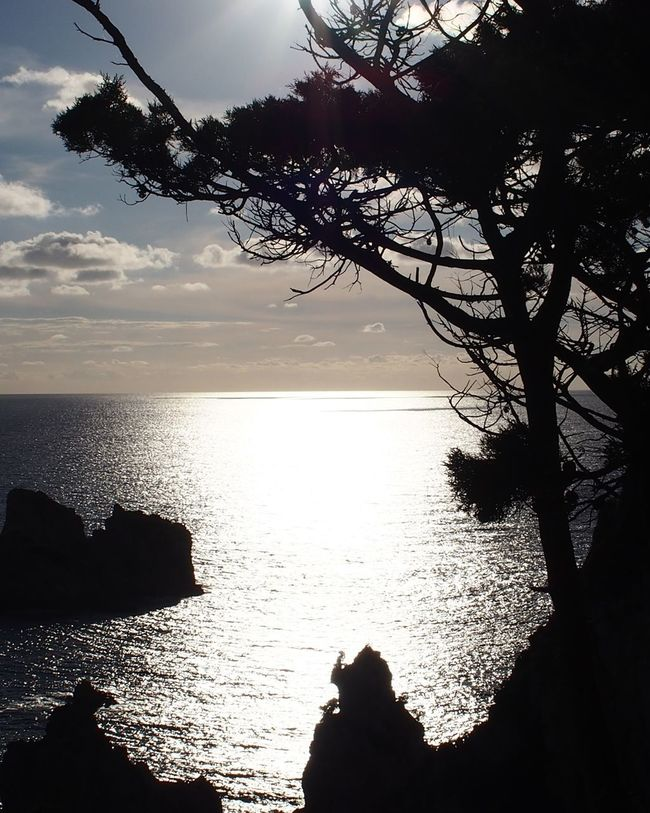 Sunset Silhouettes Sunset✨trees✨ The Week On Eyem Sky Eye Em Nature Lover Water Sea Horizon Over Water Tree Silhouette Tranquil Scene Corfu, Greece