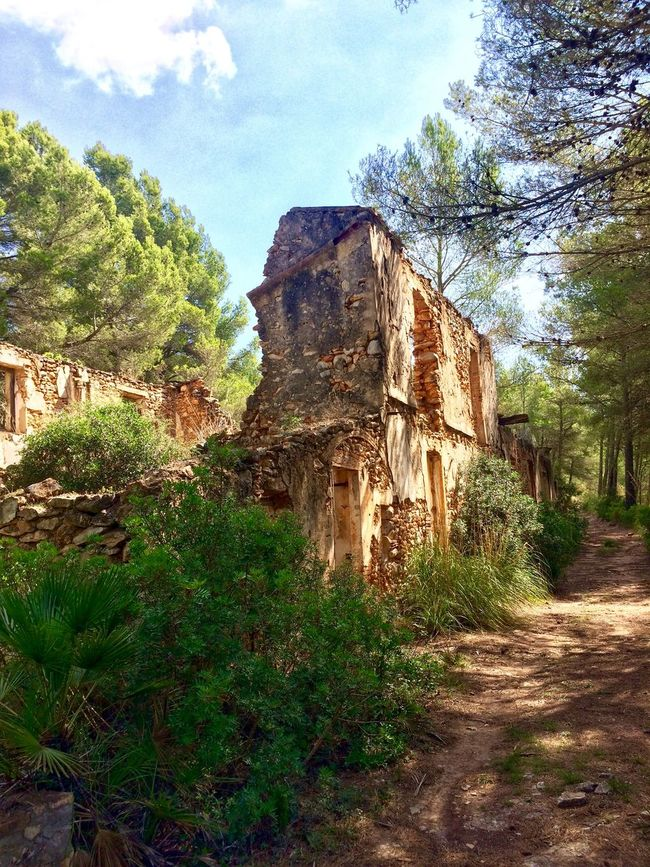 SPAIN España Mediterranean  Countryside Trees Ruins Traveling Travelling Architecture Architecture_collection IPhoneography