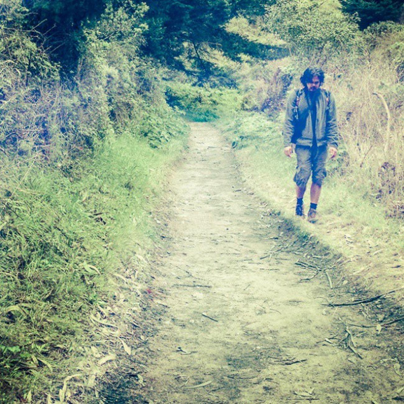 Hiking the less beaten path of Palomarin Trailhead. Bolinas , California