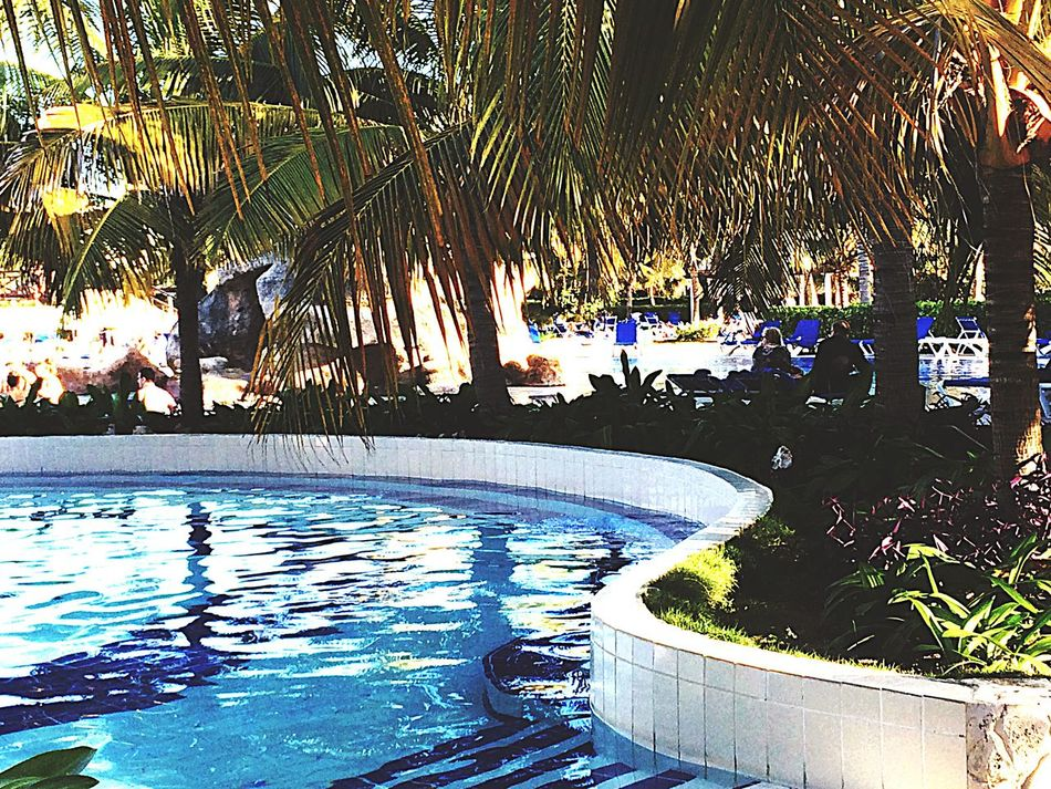 Pool Enjoying Life Hanging Out Check This Out Relaxing Taking Photos Travel Cuba Sunset #sun #clouds #skylovers #skyporn #sky #beautiful #sunset #clouds And Sky #beach #sun _collection #sunst And Clouds