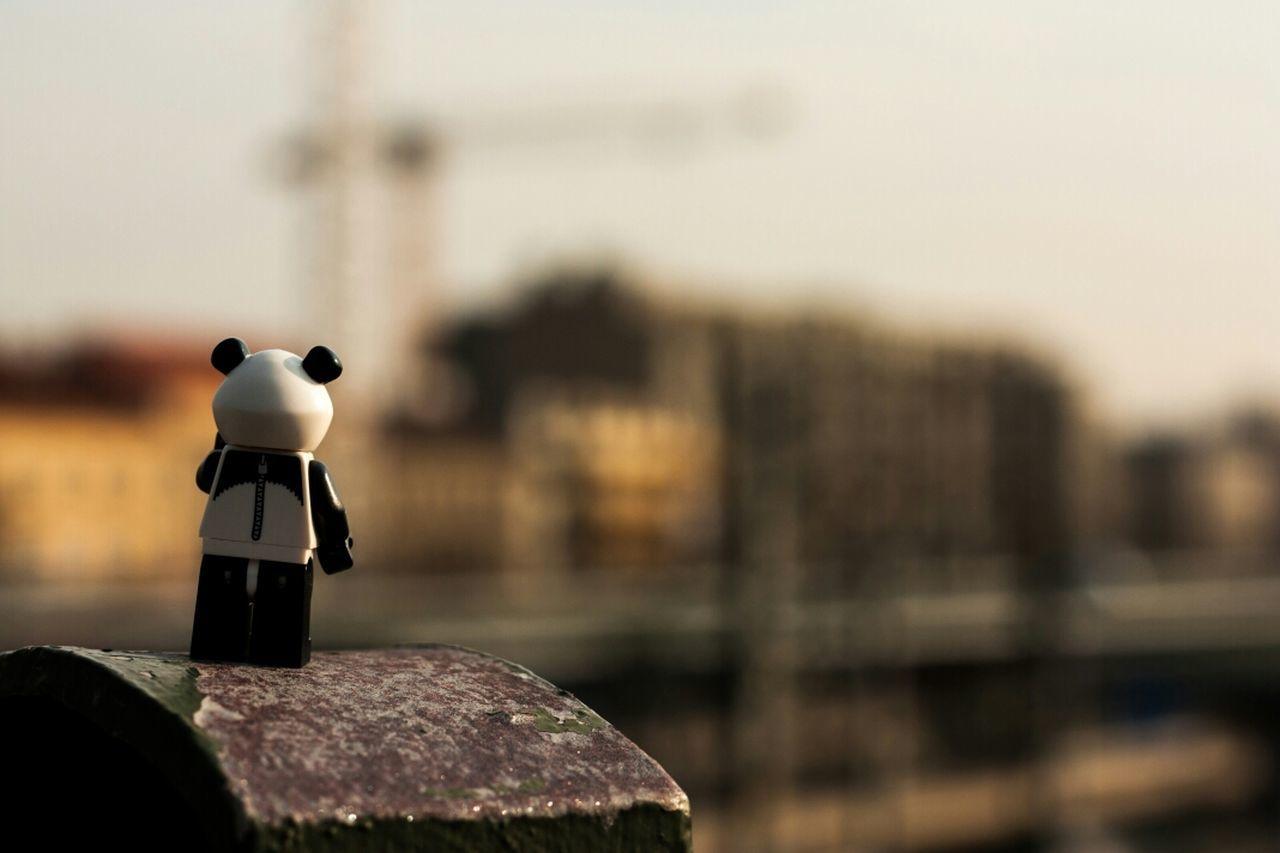 Panda On Tour to the party.. Beam Me Up ¥enn Hello World LEGO