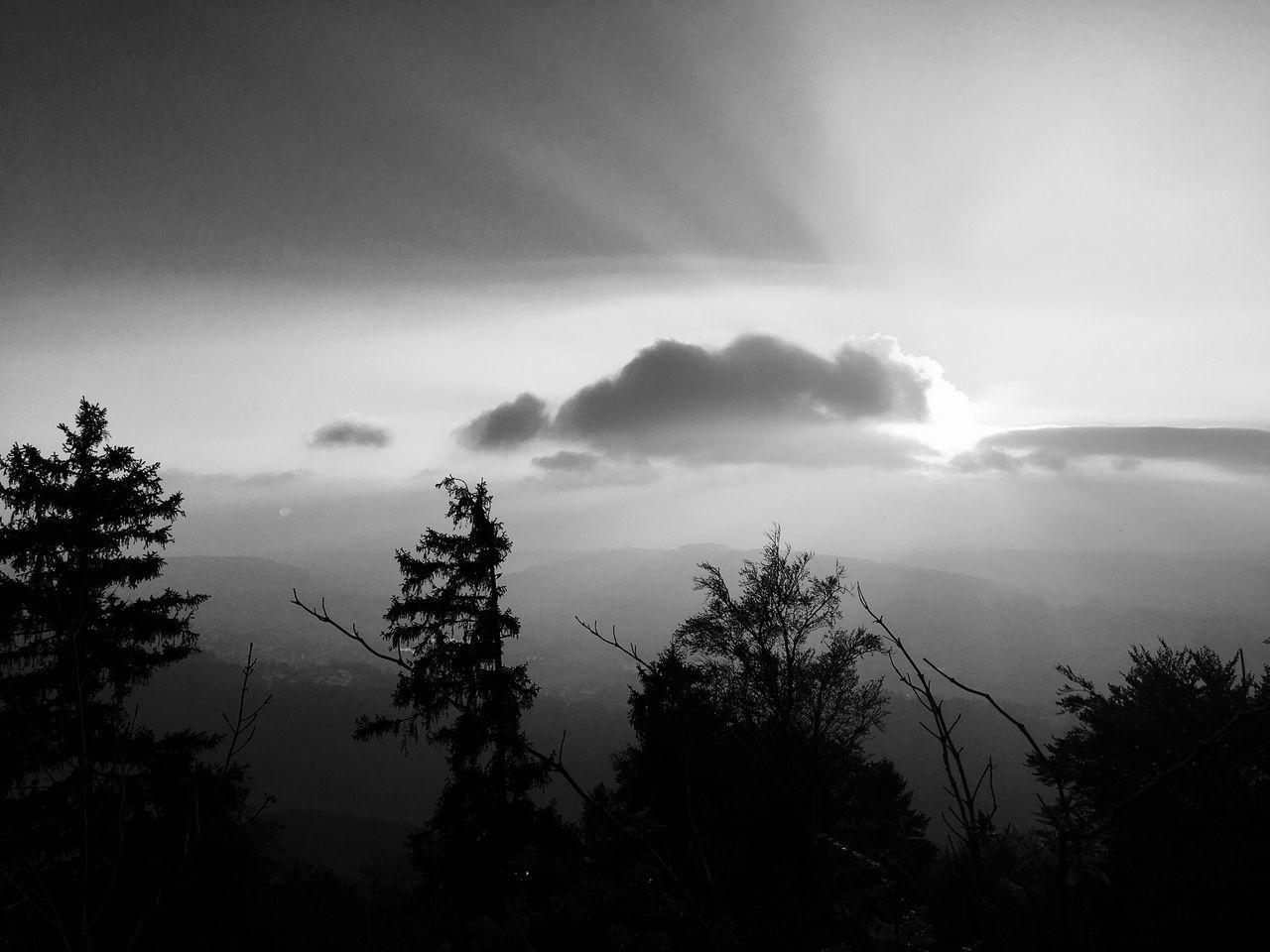 üetliberg Blackandwhite Sun Fog