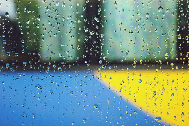 Rain Day Landscape Enjoying Life Taking Photos