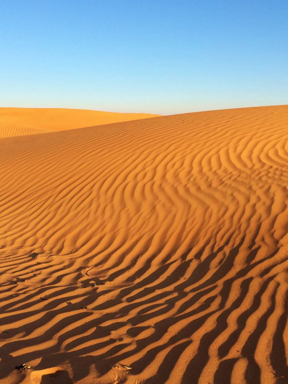 Arid Climate Day Desert Nature Oman Oman_photography Outdoors Patterns Sand Dune Sand Dunes Sand Patterns Shadows Travel Destinations Travel Photography