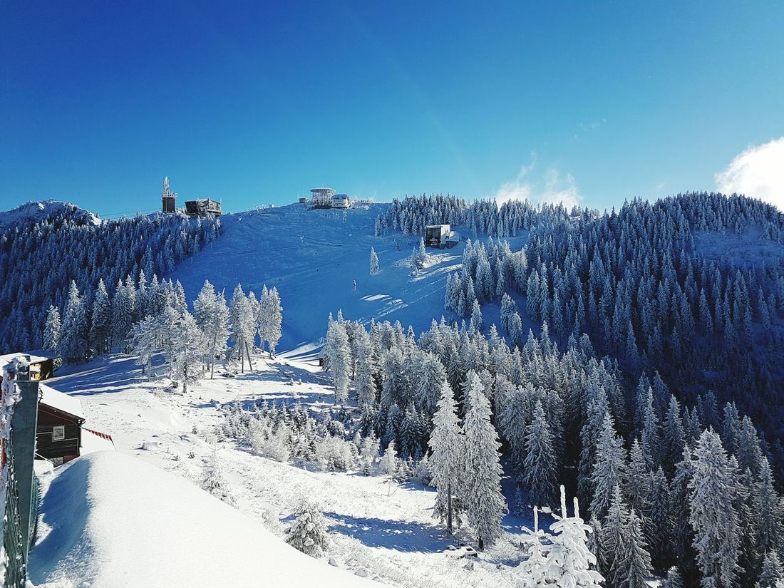 Clear Sky Nature Skiing Poiana Brasov Outdoors Landscape