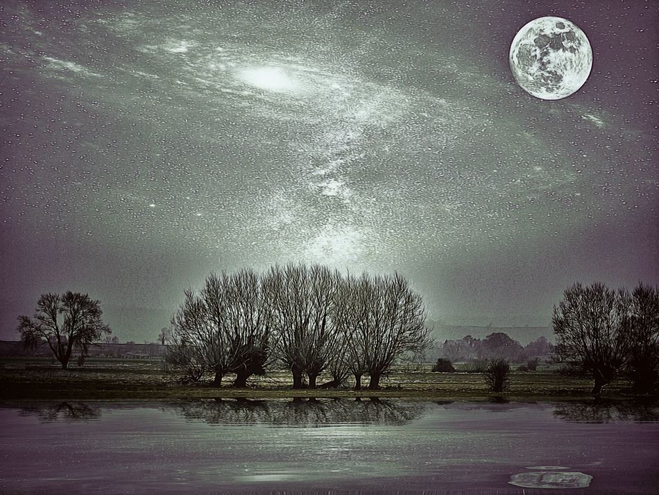 Night Tree Milky Way Nature No People Star - Space Galaxy Water Astronomy Edit Junky Dramatic Sky Willow Trees Somerset Levels Uk