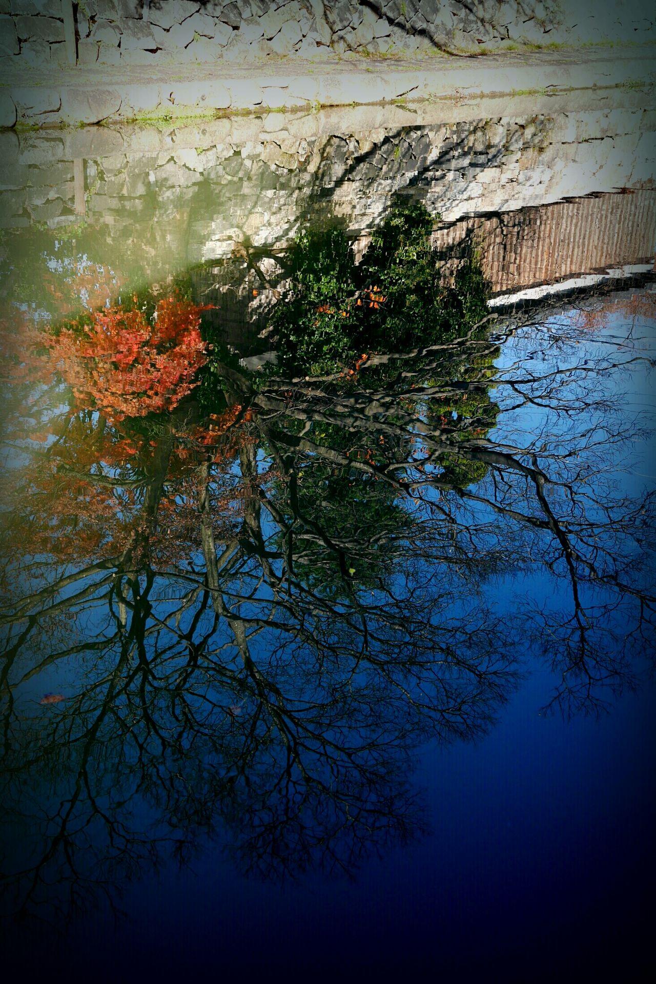 Waterway Ōmihachiman Shiga,Japan Winter Water Reflection Calm Tree Sky