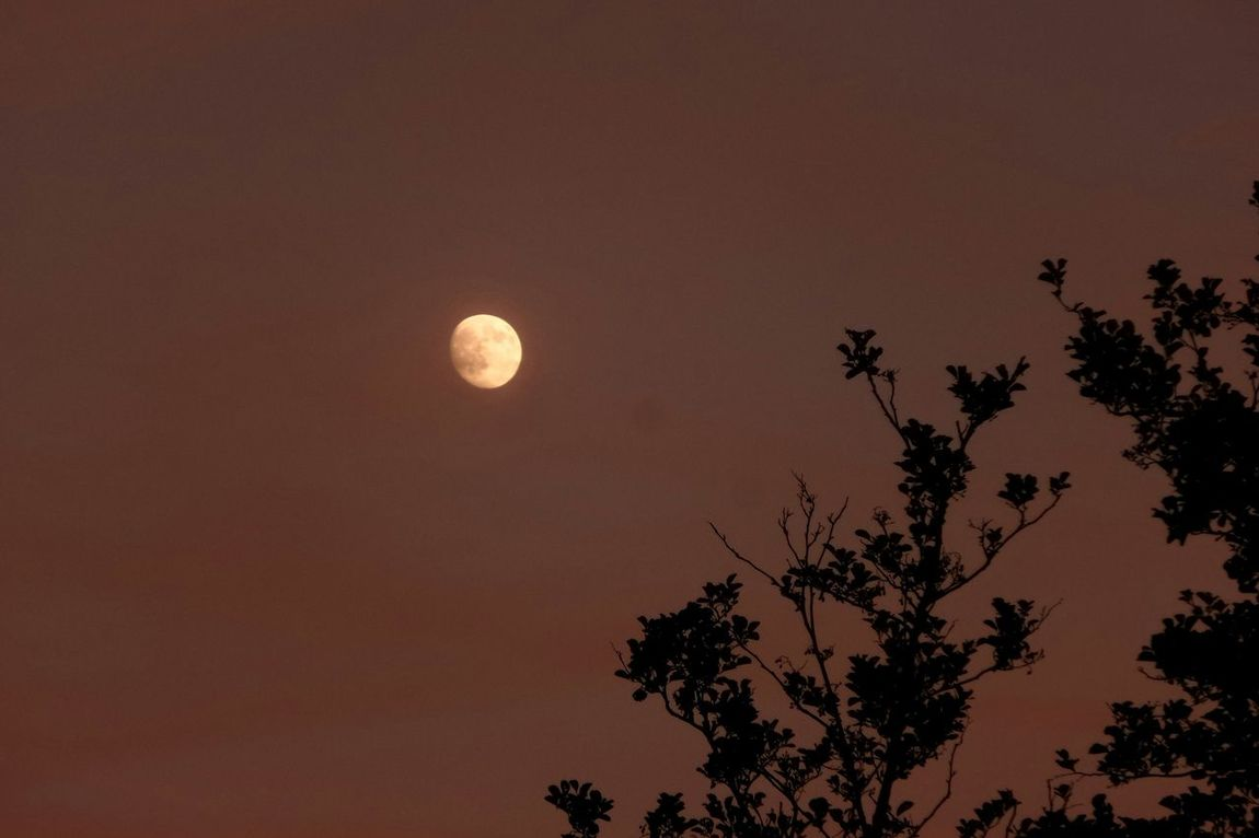 Maan  Moon Moonlightscape Kzoom