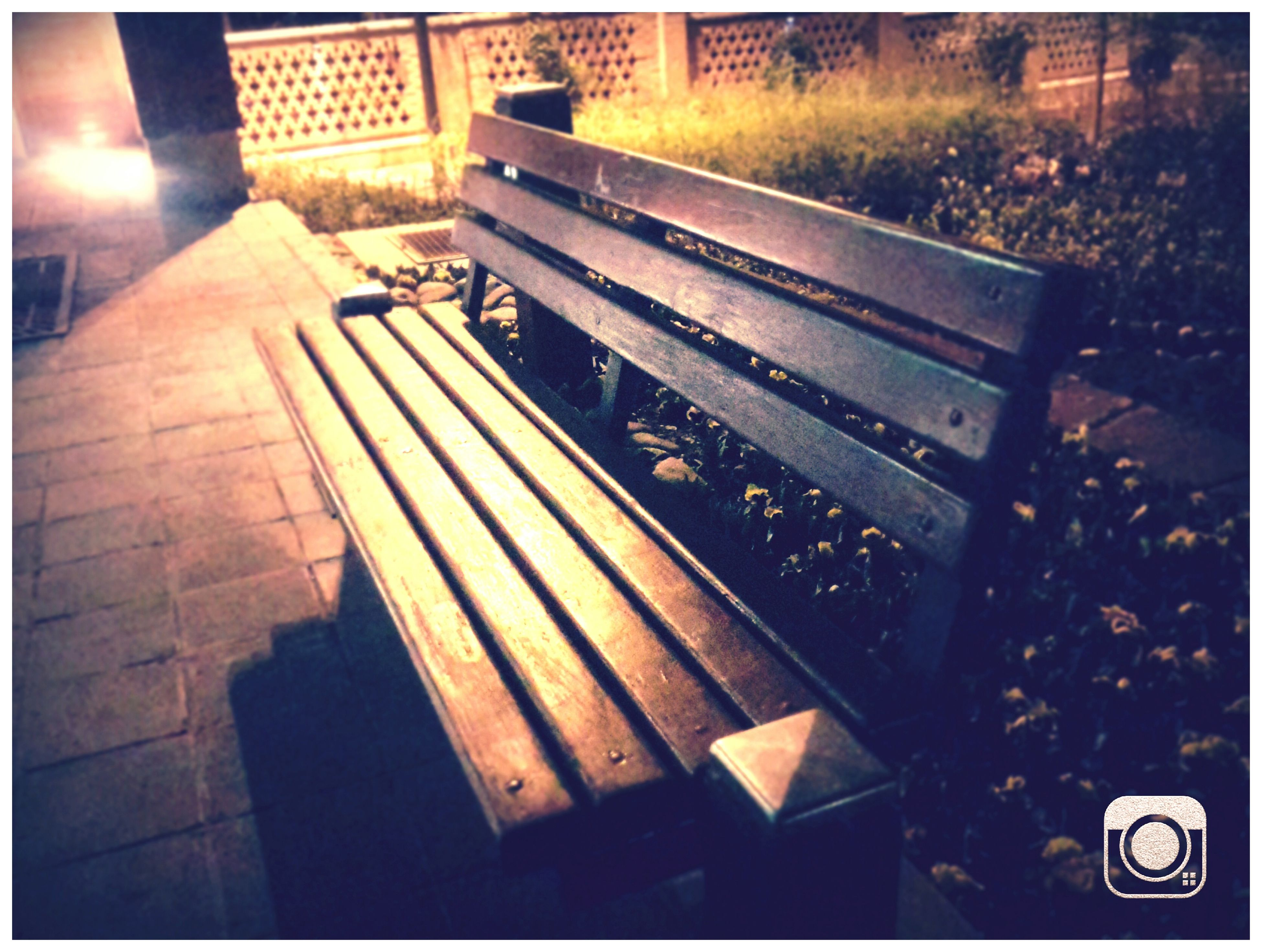 tehran Iranian Garden Beautiful Iran Iran Alonetime Alone In The City  Alone In The Dark Night