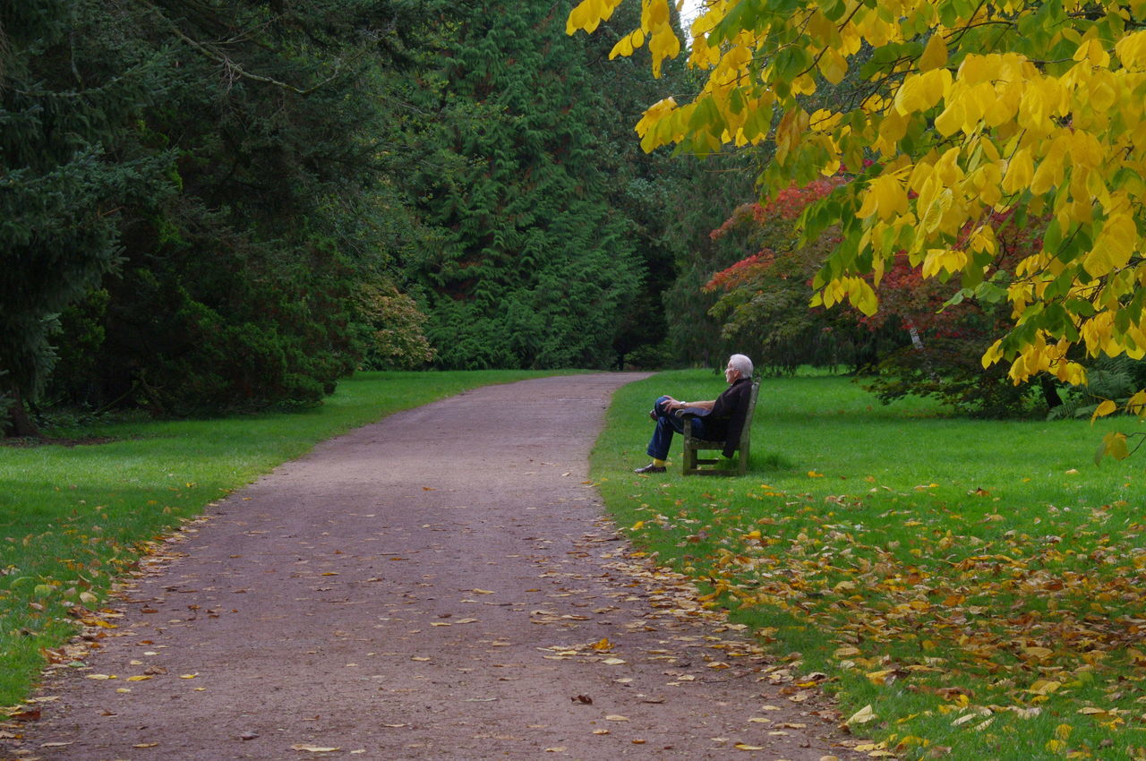 Side View Of Senior Man Sitting On Bench At Park