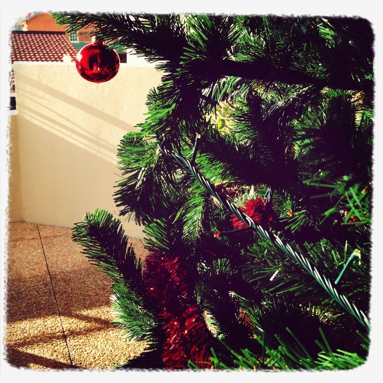 Noël Au Balcon ...