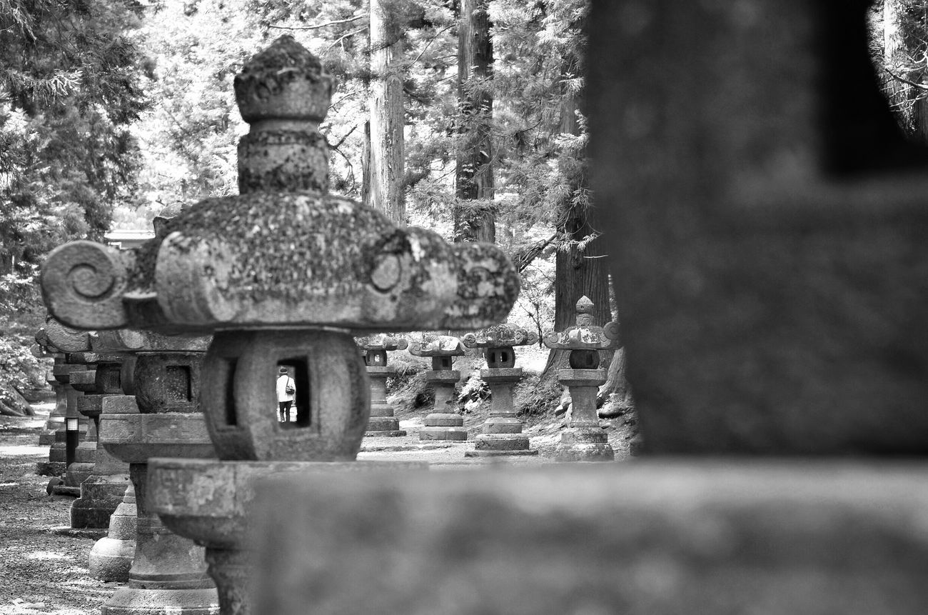 神社 参道 Stone Lanterns On The Way Japanese Shrine People Watching Nature Frame Within A Frame From My Point Of View Capture The Moment Enjoying Photography Looking To The Other Side Blackandwhite Monochrome Composition Getting Inspired Getting Creative Learn & Shoot: Layering EyeEm Best Shots - Black + White