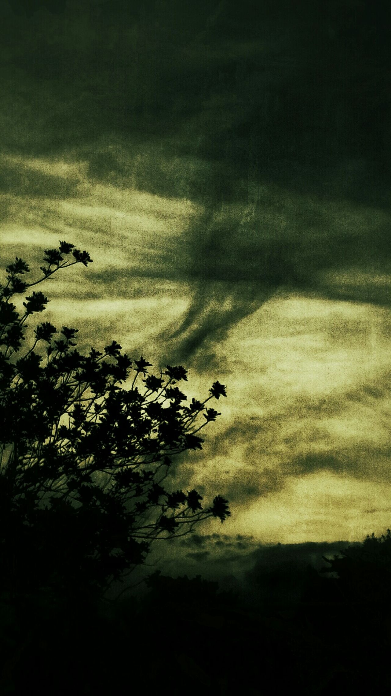 Clouds And Sky Tree And Sky Cloudscape Stormy Weather Stormysky Nature Photography Art And Nature Magichour Abstract Photography Creative Light And Shadow Canvaseffect