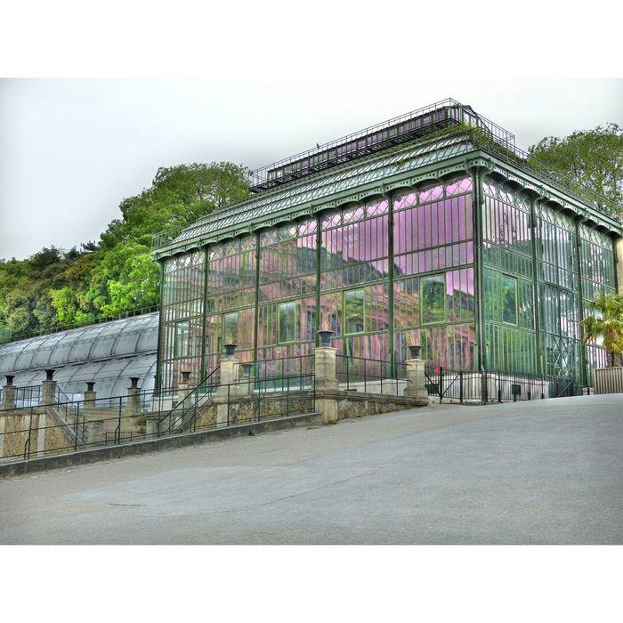 Garden Photography Muséum National D'Histoire Naturelle Visitparis