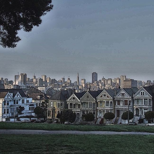 #sanfrancisco #california #usa #travel #city #paintedladies #street #outdoors #house #honktravel Street City Travel House USA Outdoors California Sanfrancisco Honktravel Paintedladies