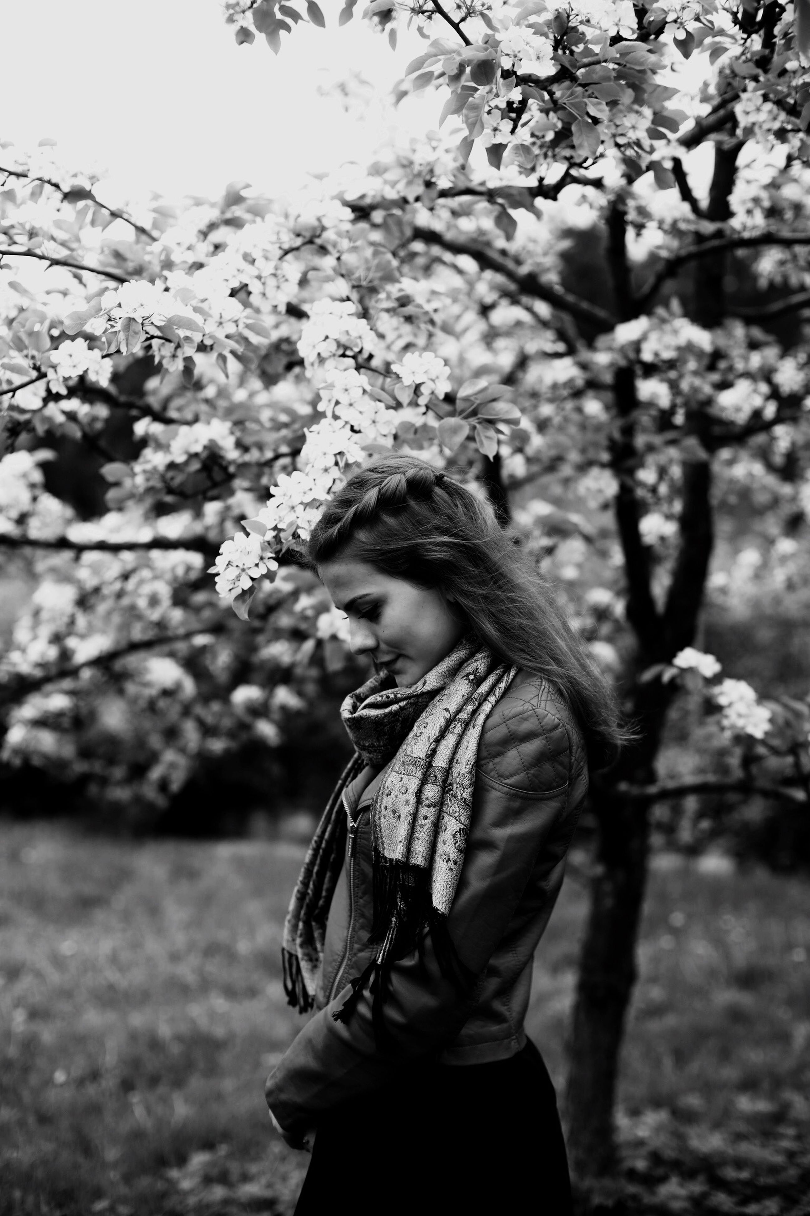 lifestyles, tree, leisure activity, young adult, focus on foreground, person, casual clothing, young women, side view, branch, standing, holding, looking away, three quarter length, nature, park - man made space, waist up, day
