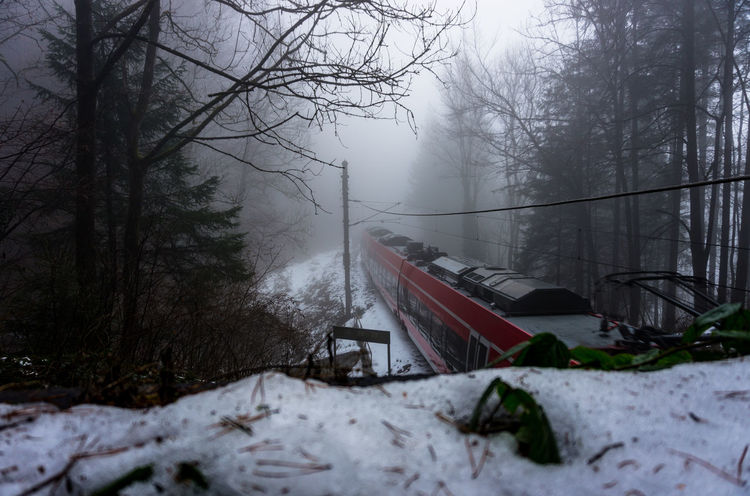 train into fog Innsbruck Train Austria Cold Travel Train - Vehicle Fast Connection Nature Snowing Transportation No People Fog Frozen Outdoors Tree