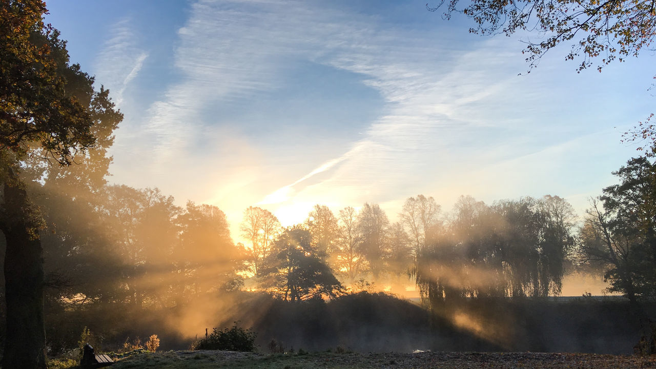 Beauty In Nature Day Misty Morning Nature No People Outdoors Rays Of Light Scenics Sky Sunbeam Sunrise Tree