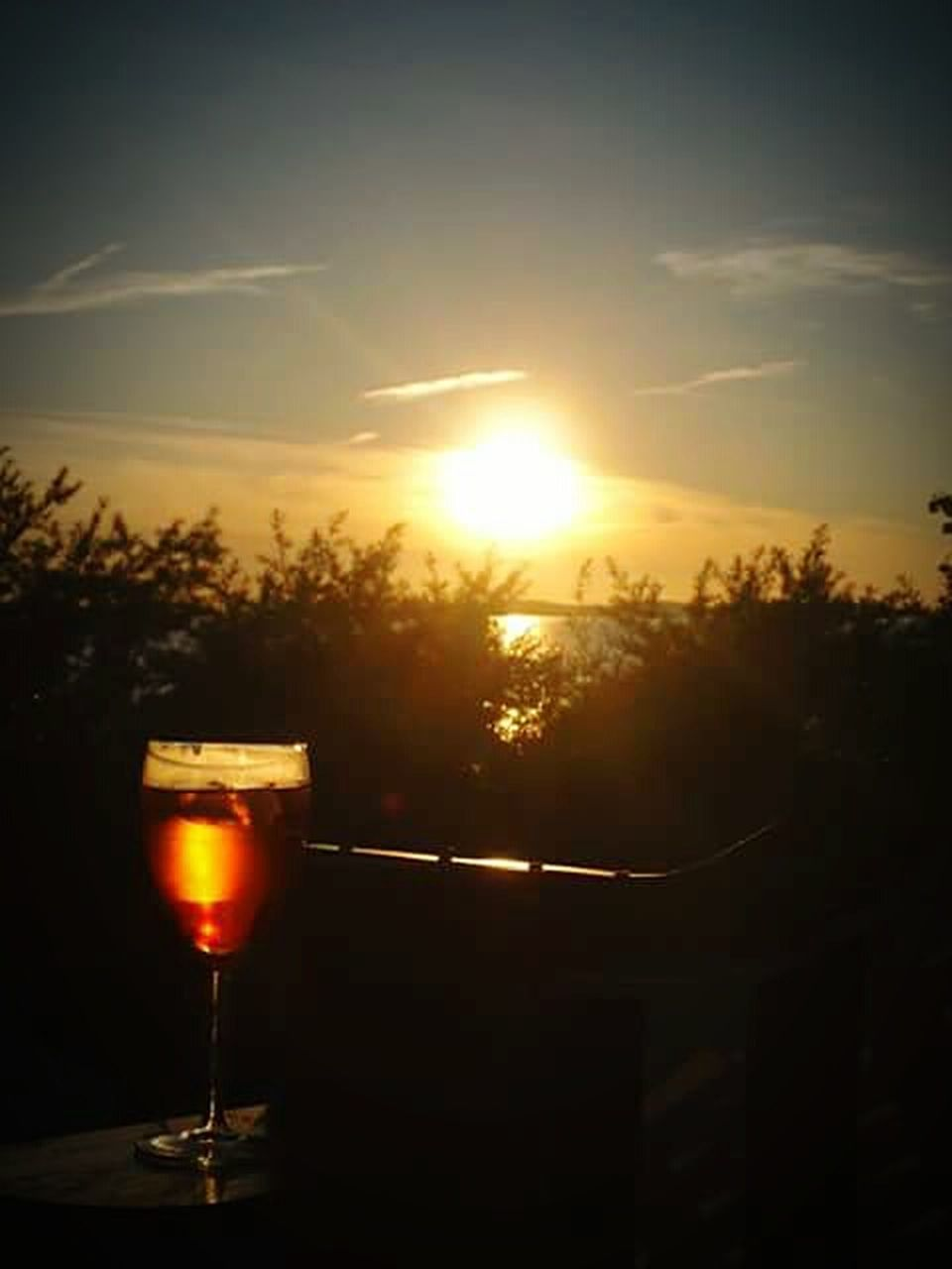 sunset, sun, no people, silhouette, alcohol, tree, sunlight, wine, sky, beauty in nature, nature, drink, outdoors, close-up, day