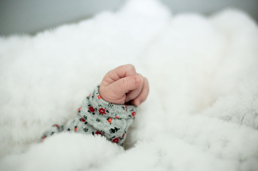 Baby Children Delicate Girl Hand Little Newborn Photo Session Sweet