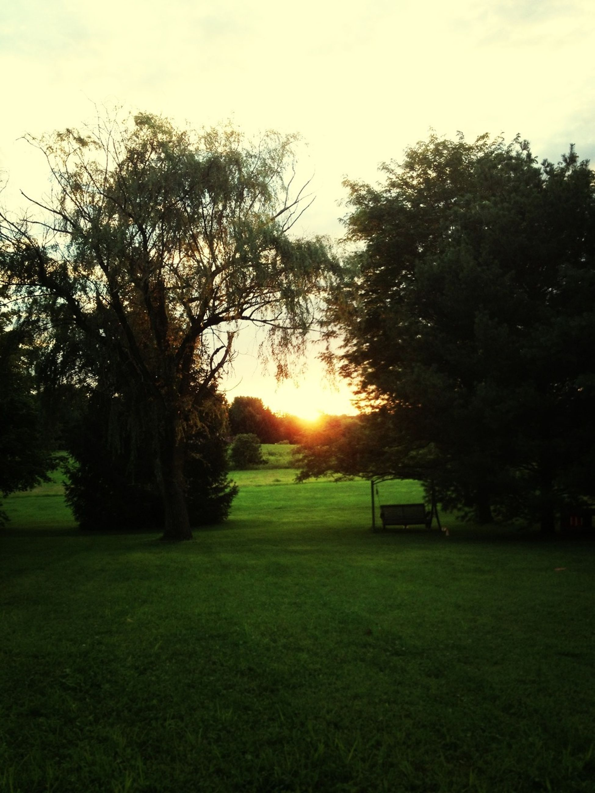 Perf Sunset