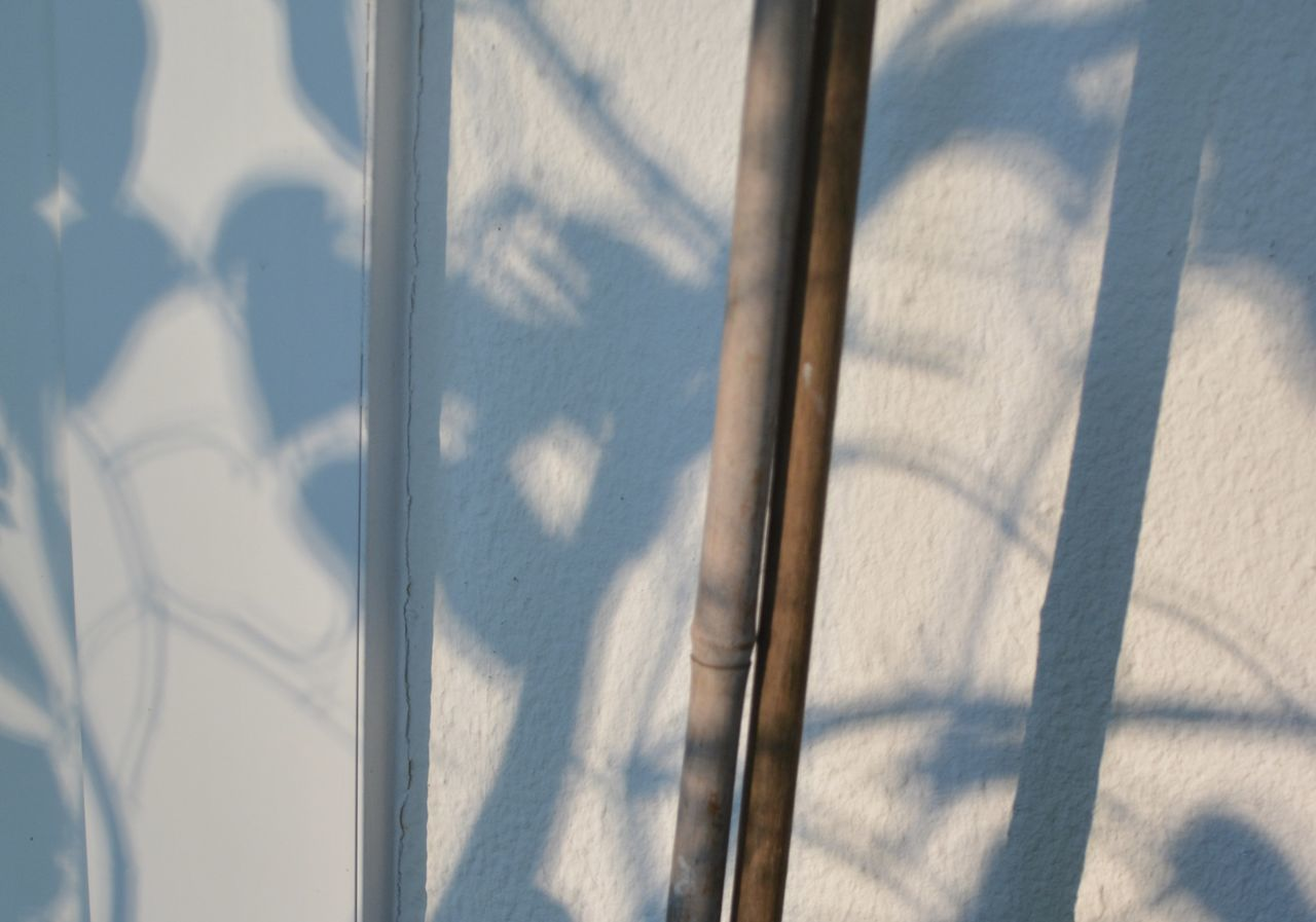 shadow, sunlight, day, no people, close-up, outdoors, nature