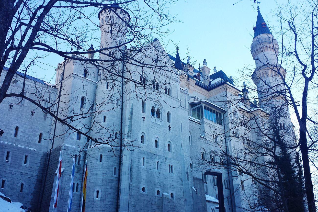 Neuschwanstein Cinderella Castle