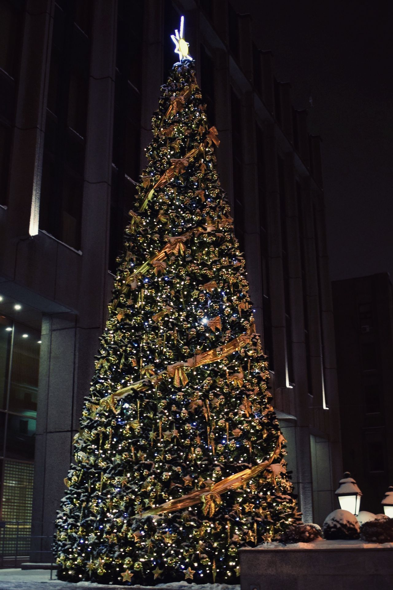 A lovely Christmas tree 🎄 Christmas Christmas Tree Building Exterior Architecture Tree Illuminated Built Structure Christmas Decoration Christmas Lights City No People Celebration Low Angle View Sky Night Tree Topper Outdoors Christmas Ornament Street Photography Nightphotography Night Photography Christmas Around The World