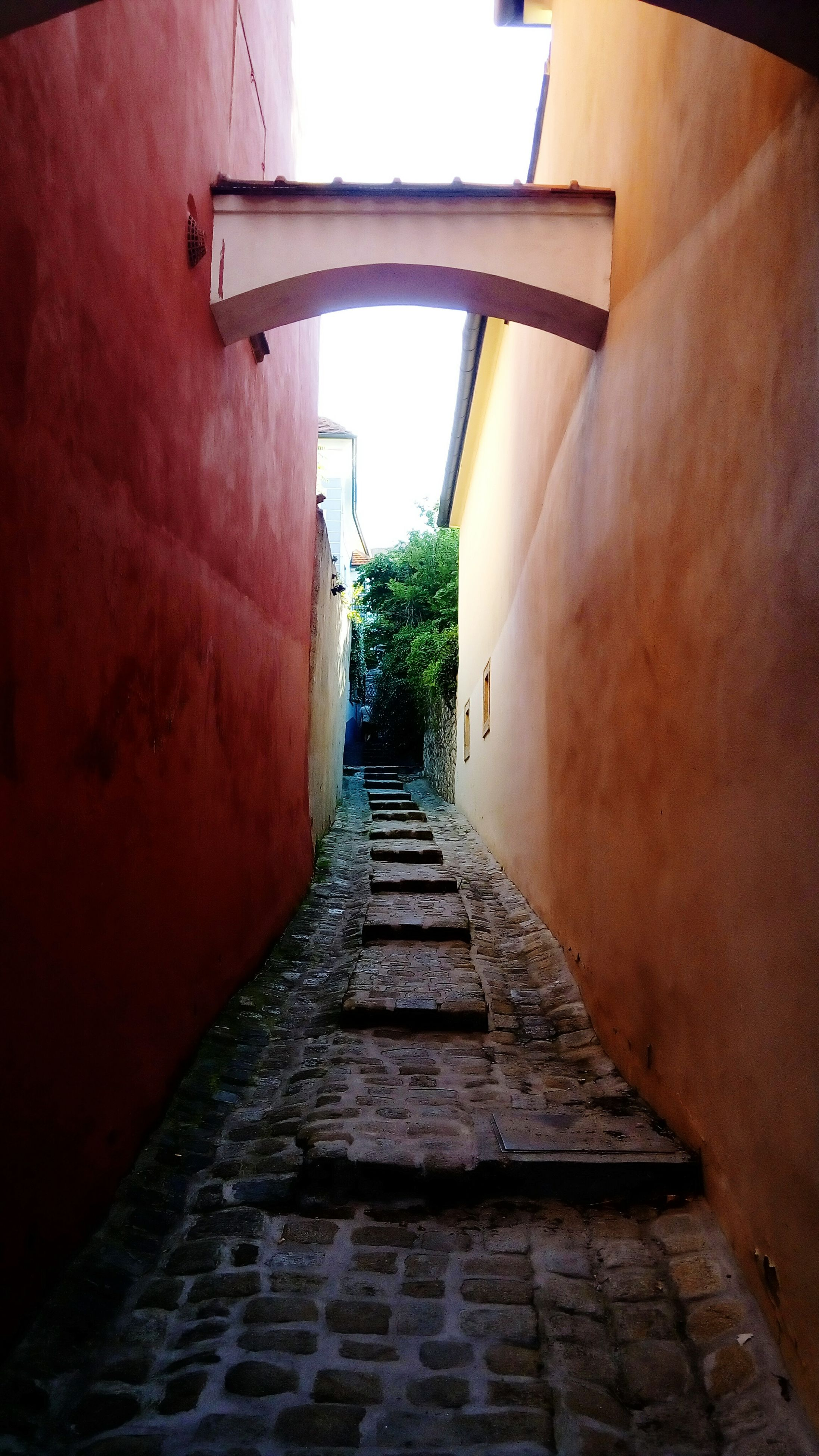 the way forward, architecture, built structure, building exterior, diminishing perspective, narrow, steps, wall - building feature, vanishing point, alley, walkway, building, pathway, footpath, steps and staircases, wall, cobblestone, leading, house, long