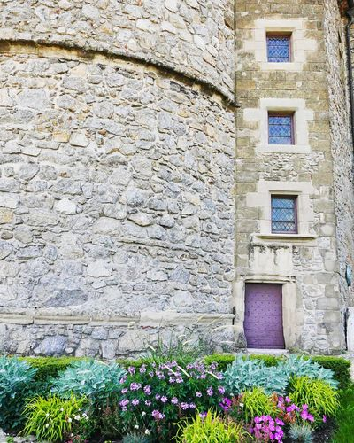 The Week On EyeEm Architecture History Built Structure Building Exterior No People Flower Day Outdoors Château Chateau Musee Tournon Sur Rhone France Stain Glass Window Windows Door Purple