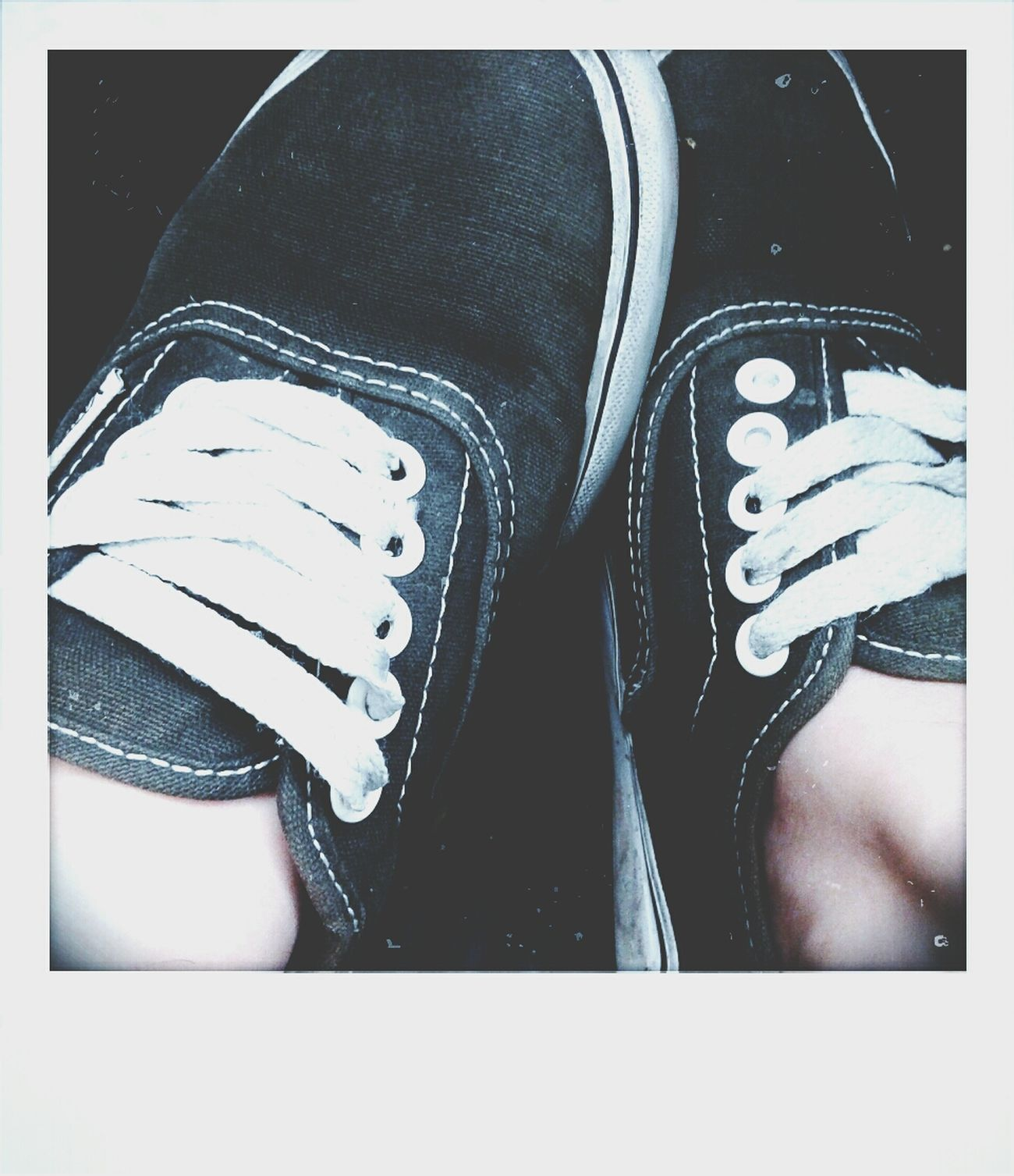 got them vans on Oh My Love For My Shoes Shoes So Dang Pretty Oh My Genes