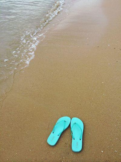'Long Time No Sea'