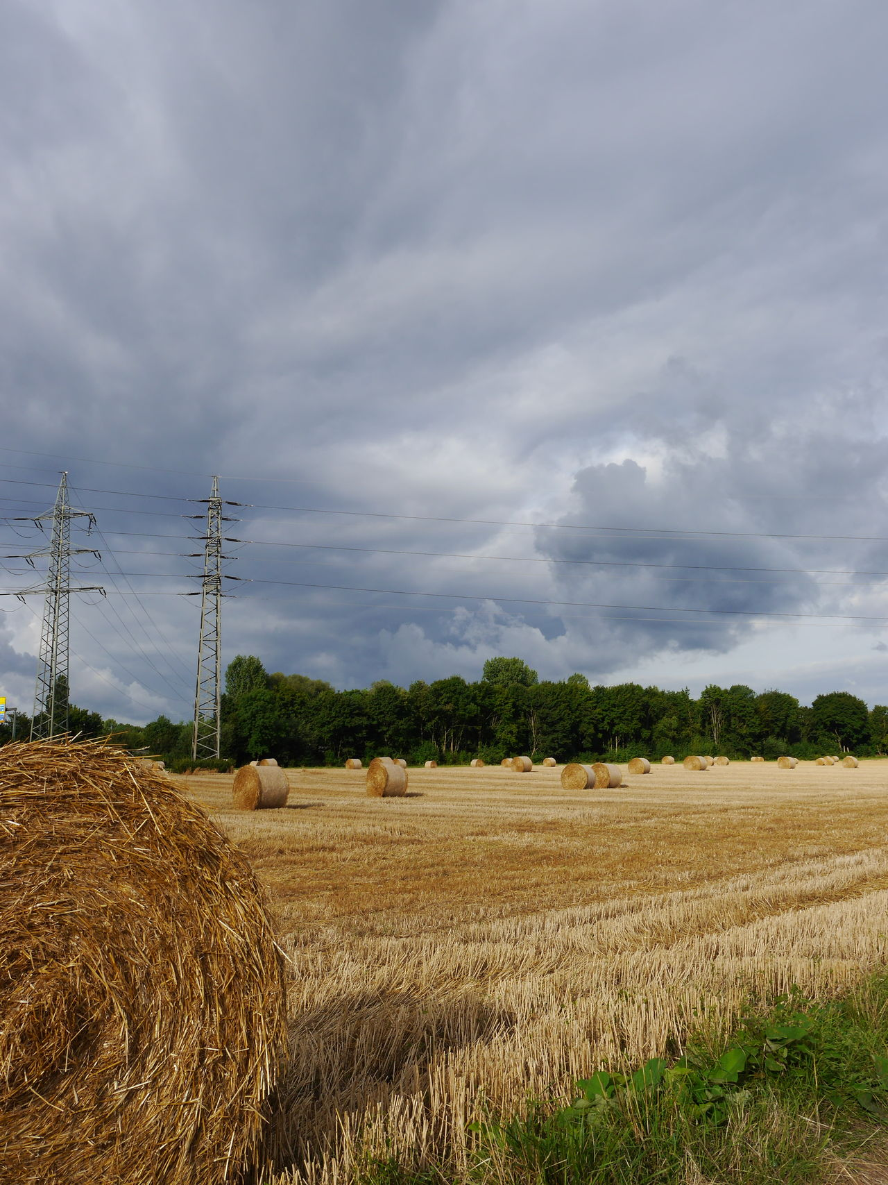 Hay balls /// Cloud - Sky Field Rural Scene Agriculture Tree Landscape No People Tranquil Scene Nature Outdoors Sky Storm Cloud Day Beauty In Nature Technology Electricity Pylon