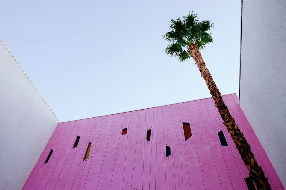 Pretty In Pink Summer Pastel Power Simplicity Minimal Perspective Geometry Architecture California The Week On EyeEm