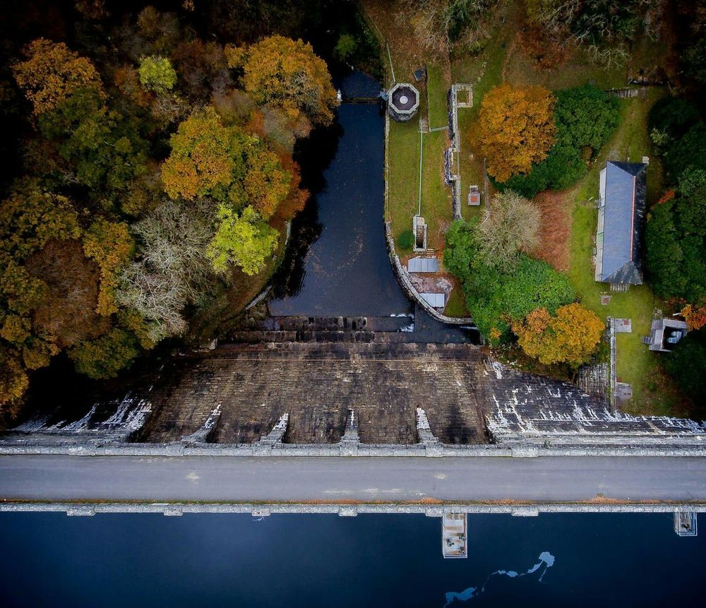 Water No People Nature Outdoors Beauty In Nature Tree Day Autumn Colors Burrator Reservoir Aerial Photography Dronephotography Perspective DJI Phantom 4