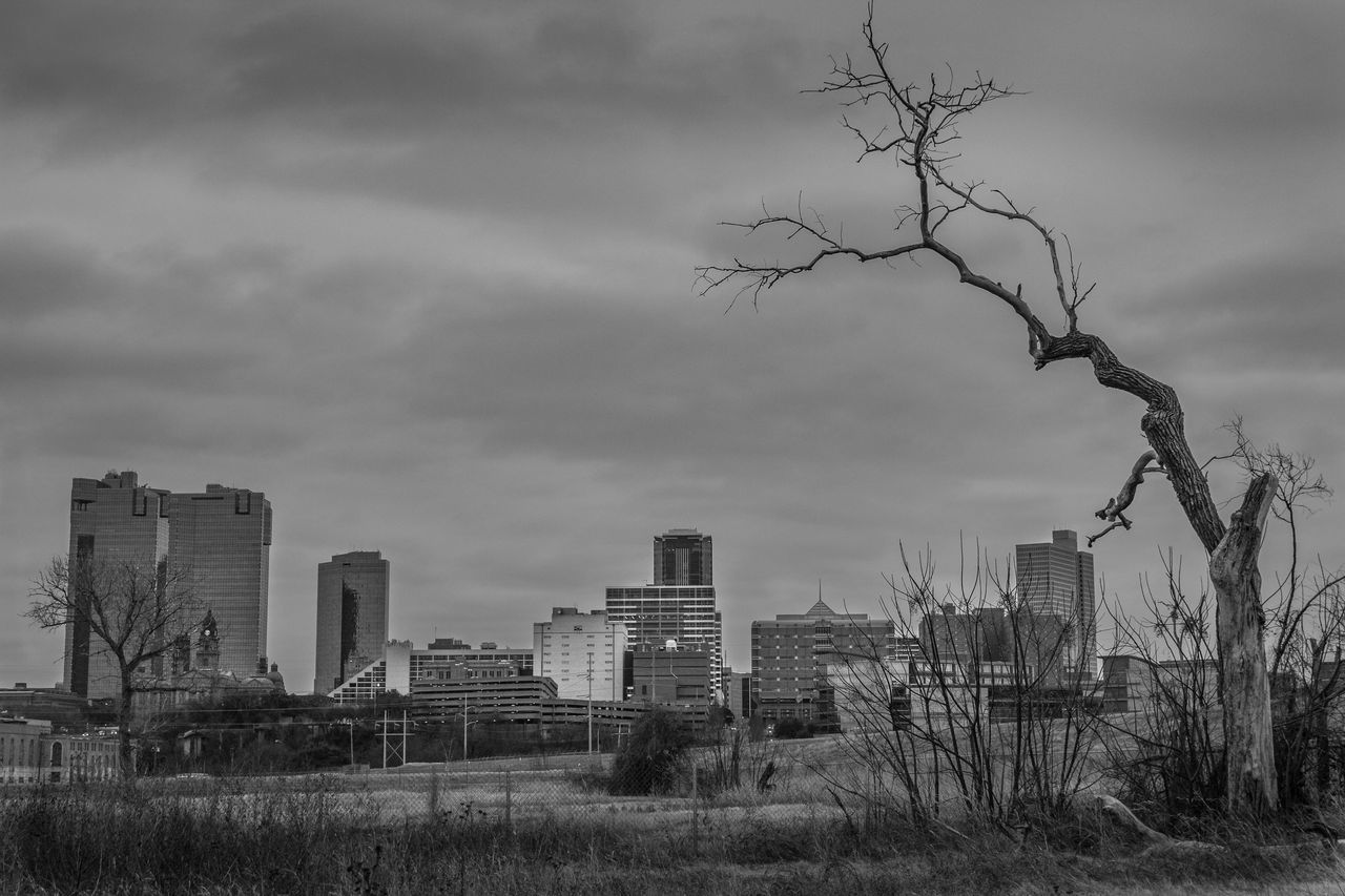 Black And White Urban Skyline Cityscape City Cloud - Sky No People Skyscraper Tree Outdoors Storm Cloud Sky DFW Fort Worth, TX Fort Worth FW Fortworth Everettszurek Day Trinity River City Nature Tree Fort Worth Texas Dramatic Sky Fort Worth Skyline Texas